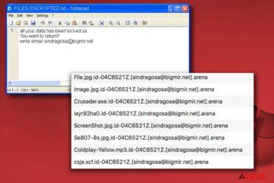 Az Arena zsarolóvírus üzenete, a FILES ENCRYPTED.txt