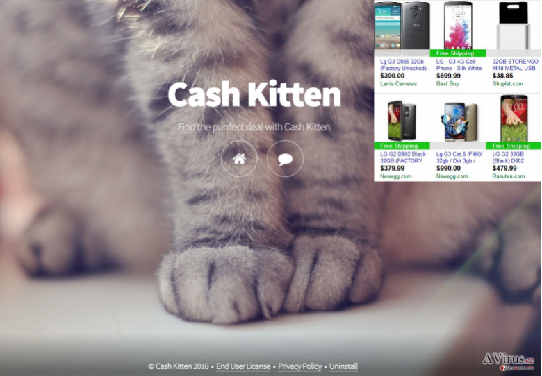 Cash Kitten ads and the main page of this app