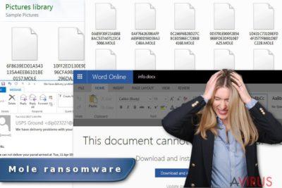 A Mole ransomware vírus képe
