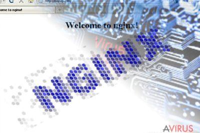 Kép az Nginx malware-ről