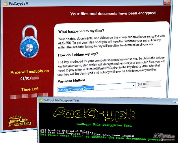 PadCrypt virus files