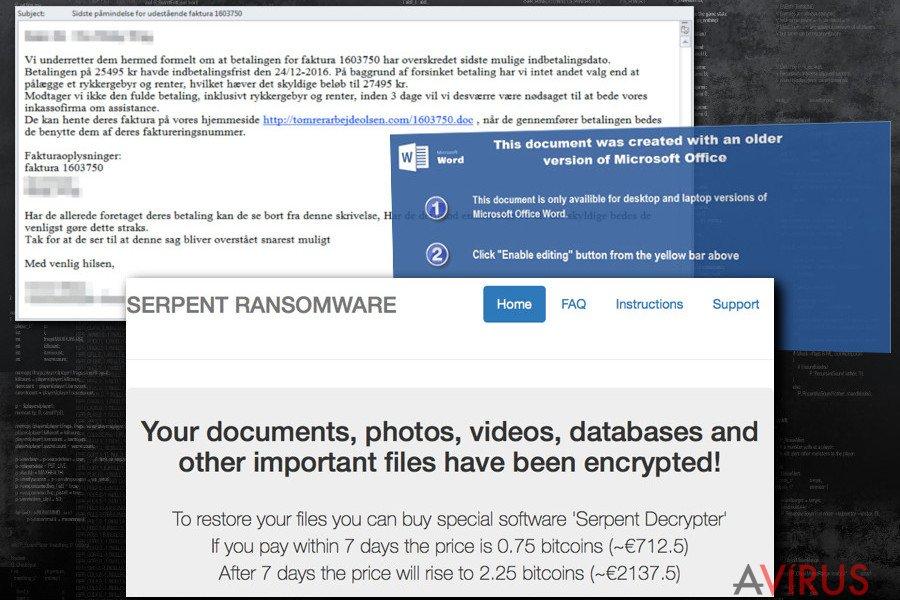 A Serpent ransomware vírus külseje