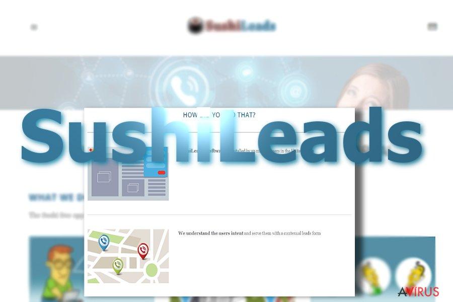 SushiLeads hirdetések kép