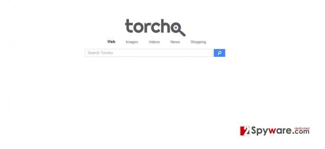 Torcho Web vírus kép