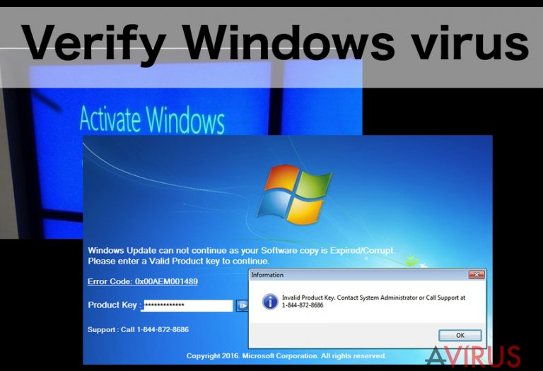 An illustration of the Verify Windows virus