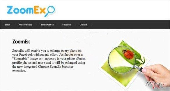 ZoomEx virus